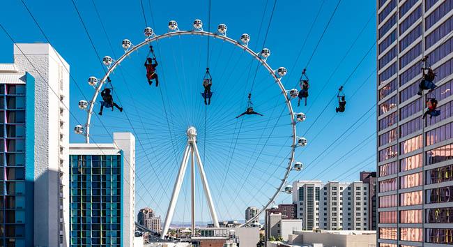 Fly Link Vegas